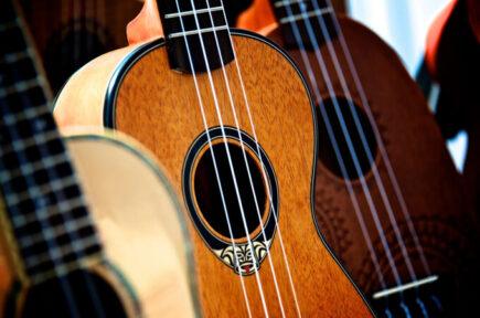 best beginner ukuleles