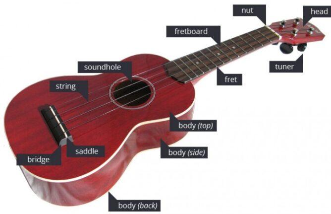 ukulele components