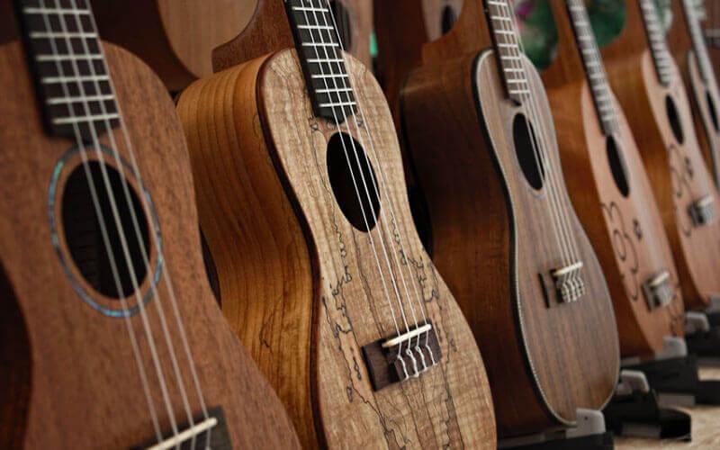 ukulele materials
