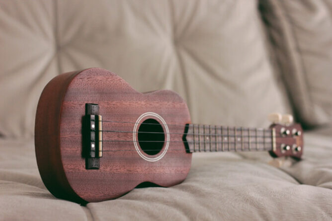 ukulele price ranges